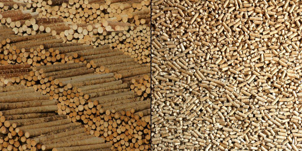 Les calderes de biomassa utilitzen com a font d'energia combustibles naturals com els pèl·lets de fusta, ossos d'oliva, residus forestals, closques de fruits secs, etc. per generar calefacció (per radiadors, aire o terra radiant) i aigua calenta a un habitatge o edifici d'habitatges. És per això que les hi considera les calderes més ecològiques del mercat. La base del seu funcionament és similar a qualsevol altra caldera: les calderes de biomassa cremen el combustible (el pèl·let o similar) generant una flama horitzontal que entra a la caldera. La calor generada durant aquesta combustió és transmès al circuit d'aigua a l'intercanviador incorporat a la caldera, de manera que s'obté aigua calenta per al sistema de calefacció o ACS. Si estàs interessat a instal·lar una caldera de biomassa DEMANA PRESSUPOST sense compromís. Per optimitzar el funcionament de la caldera de biomassa, podem instal·lar un acumulador, que emmagatzemarà la calor d'una forma semblant a un sistema d'energia solar. Les calderes de biomassa necessiten un contenidor o sitja per a l'emmagatzematge del biocombustible situat prop de la caldera. Des d'aquest, un alimentador de caragol sense fi o de succió, el porta a la caldera, on es realitza la combustió. El combustible tipus pèl·let s'ha d'emmagatzemar amb una inclinació d'uns 45° per a la seva correcta inserció a la caldera. En cremar biomassa es produeix una mica de cendra, que es recull generalment de manera automàtica en un cendrer que ha de buidar diverses vegades a l'any. Quin tipus de caldera de biomassa triar? La selecció de la caldera, del sistema d'emmagatzematge i del sistema de transport i manipulació estan condicionades per la selecció del tipus de biomassa a utilitzar. Algunes calderes permeten cremar més d'un tipus de combustible (calderes de policombustible) mentre que altres han de treballar amb una forma de combustible concreta, com seria el cas de les calderes de pel·let. En el cas de les calderes de policombustible requereixen un